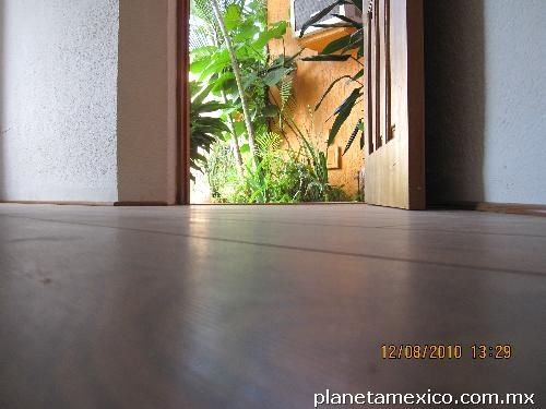 Bambu Decoracion Exterior ~ Fotos de Decoraci?n de Exterior e interior pisos, laminados, pisos de