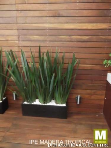 P rgolas de madera fachadas de madera pisos de madera for Pisos de madera para exteriores