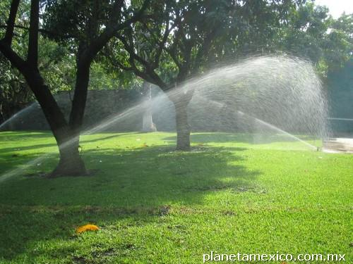 Riego por aspersi n y goteo rain bird en cuernavaca tel fono for Riego automatico jardin