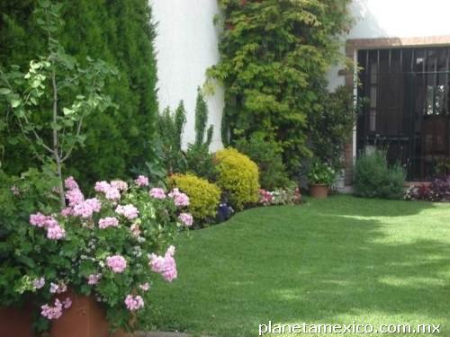 Mantenimiento y limpieza de jardines residenciales for Jardines residenciales