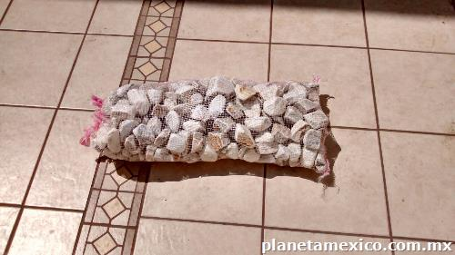 Fotos de piedra blanca de m rmol para jard n en puebla for Piedra marmol blanca