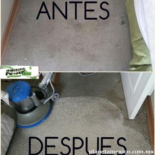 Servicio de limpieza en guadalajara tel fono - Tapicerias en guadalajara ...