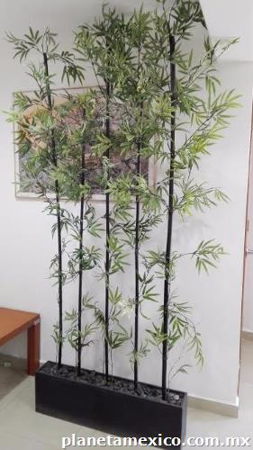 Planta De Ornato Con Jardinera (bambú) en Naucalpan de Juarez