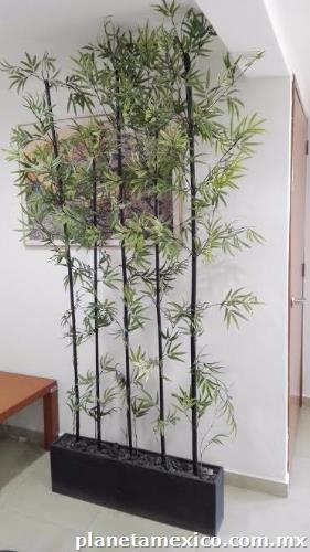 Planta de ornato con jardinera bamb en naucalpan de juarez - Jardineras con bambu ...